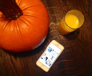 pumpkin, we heart it, and how i heart image