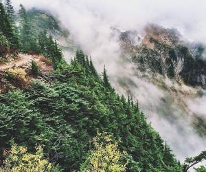 nature, adventure, and explore image