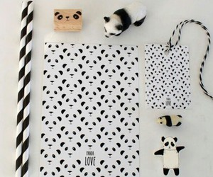 panda collection cute image