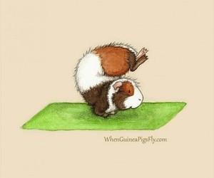 animal, draw, and gymnastics image