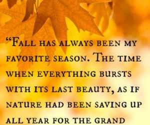 autumn, fall, and quote image