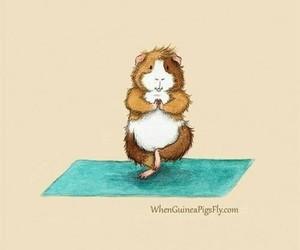 yoga and hamster image