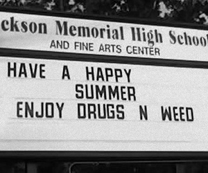 drugs, summer, and weed image