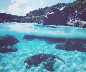 summer, water, and sea image