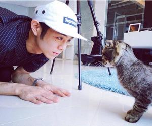 beenzino, cat, and korean image
