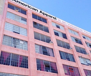 pink, american apparel, and pastel image