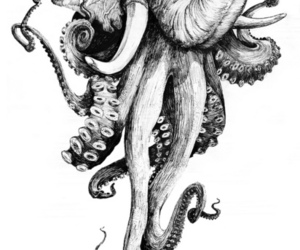 elephant, octopus, and art image