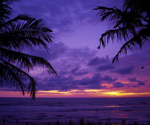 beach, sunset, and purple image