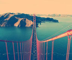 bridge and tumblr image
