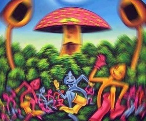 mushrooms and tripping image