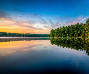 forest, lake, and landscape image