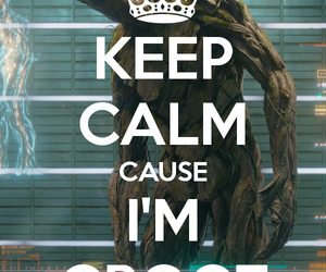 keep calm, Marvel, and groot image