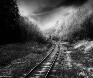 black and white, train, and track image