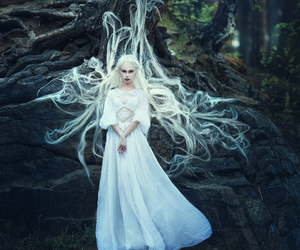 white, fantasy, and forest image
