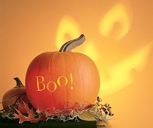 pumpkin and Halloween image