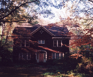 house, tree, and nature image