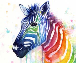 zebra, art, and rainbow image