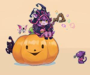cat, lol, and lulu image