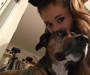 ariana grande, dog, and icon image