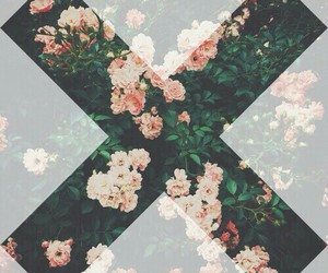 flowers, x, and hipster image