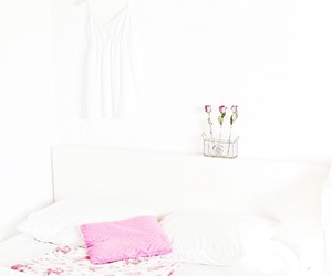 interiors and pink image