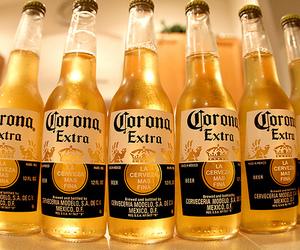 corona and beer image