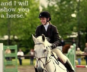 horse, quote, and animal image
