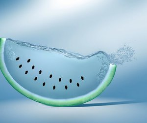 melon, melons, and watermelon image