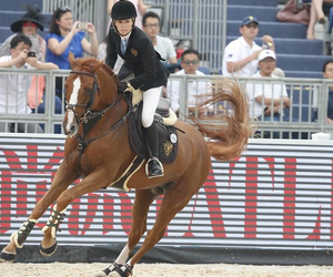 awesome, beautiful, and dressage image