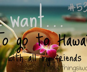 hawaii, friends, and 1000 things i want image