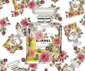 chanel, flower, and rose image