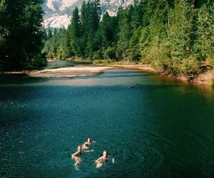 nature, friends, and summer image