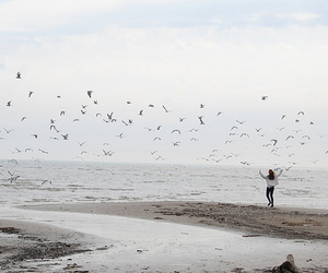 bird, girl, and beach image