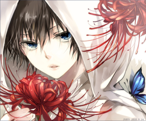 anime, flowers, and butterfly image