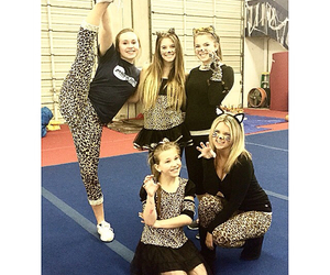 cat, kitty, and cheer image