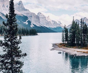 beauty, forest, and lake image