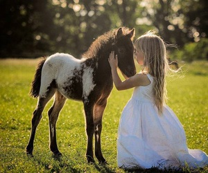 horse, girl, and sweet image