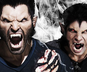 teen wolf, werewolf, and scott mccall image
