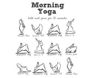 yoga, morning, and bunny image