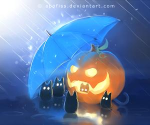 cat, Halloween, and rain image