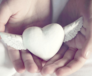 heart, white, and wings image