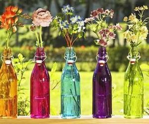 flowers, rose, and bottle image
