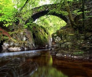 bridge, city, and scotland image