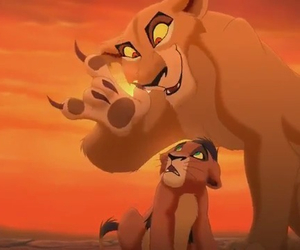 lion king, the lion king, and il re leone image