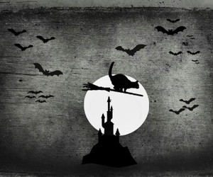 Halloween, cat, and moon image
