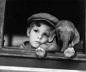 elephant, boy, and black and white image