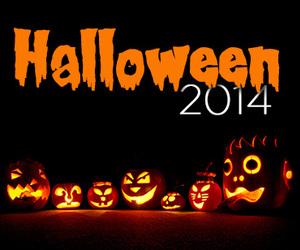 Halloween and orange image