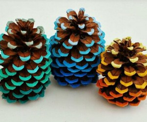 diy, pine cone, and colors image