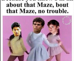 the maze runner, newt, and funny image