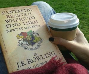 book, coffee, and cold days image